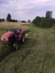 Услуги с мини трактор - косачка, мулчер, шредер, тороразпръсквачка, фреза, рало и др.